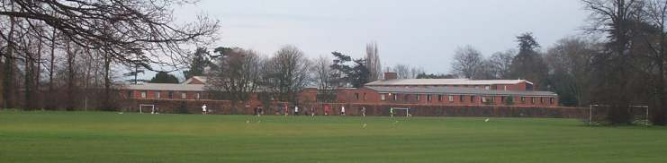 8x2 whiteknights across sports field.jpg (17970 bytes)