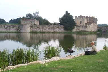 4x3 judy and black swan at leeds castle.jpg (14768 bytes)