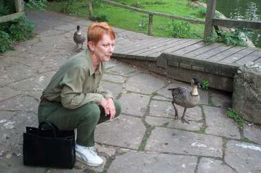 4x3 judy and goose.jpg (17137 bytes)